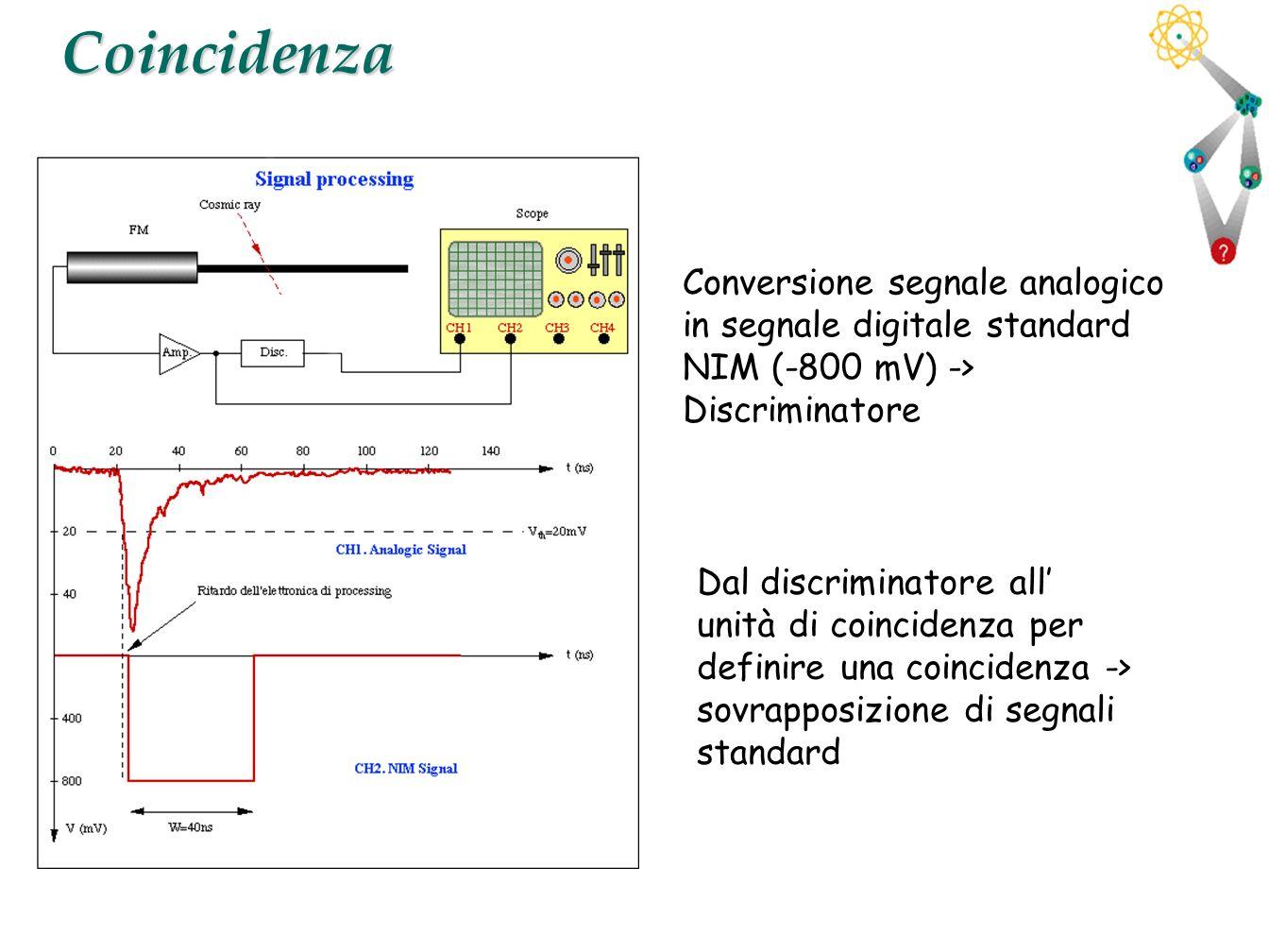 Coincidenza Conversione segnale analogico in segnale digitale standard NIM (-800 mV) -> Discriminatore.
