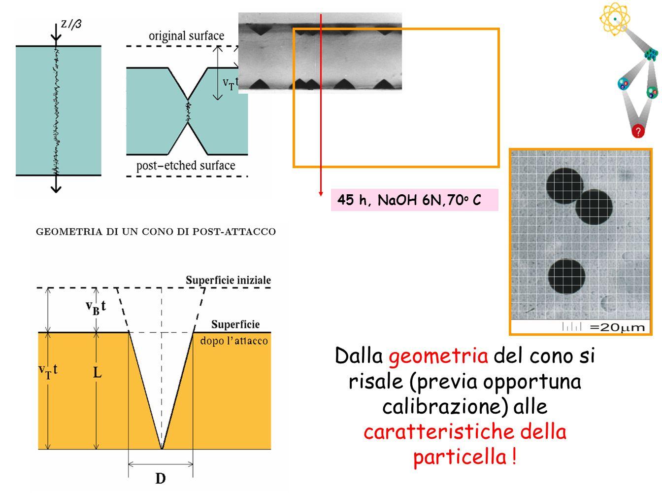 45 h, NaOH 6N,70o C Dalla geometria del cono si risale (previa opportuna calibrazione) alle caratteristiche della particella !