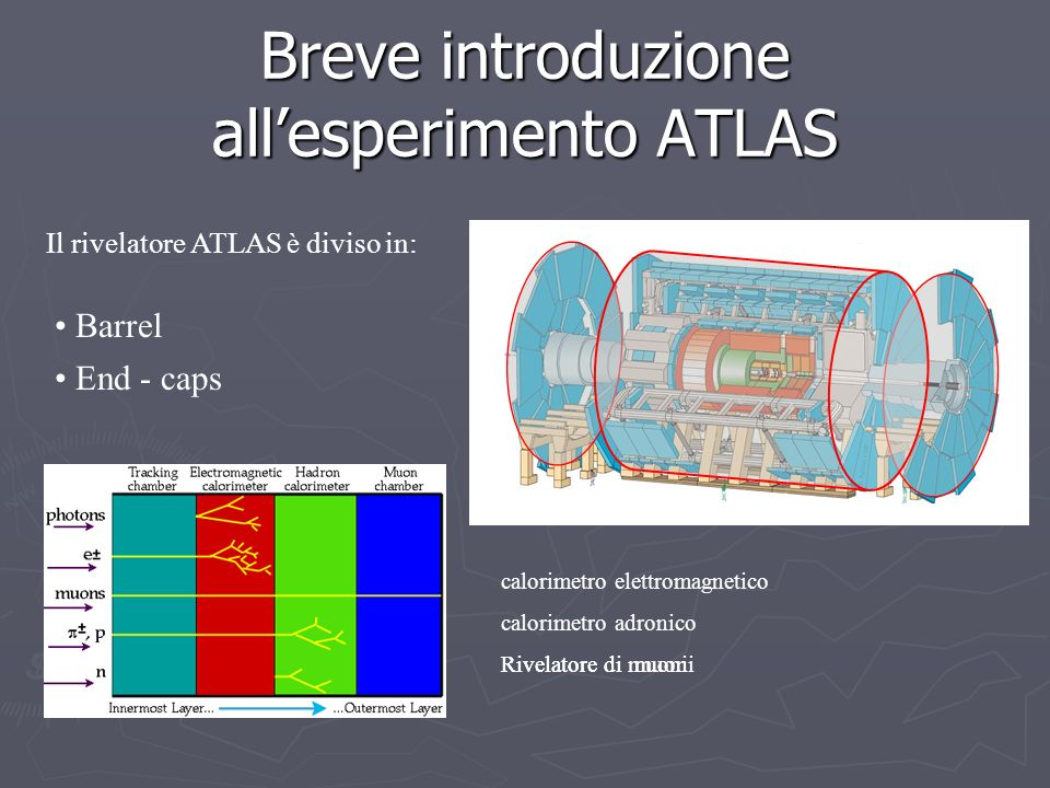 Breve introduzione all'esperimento ATLAS