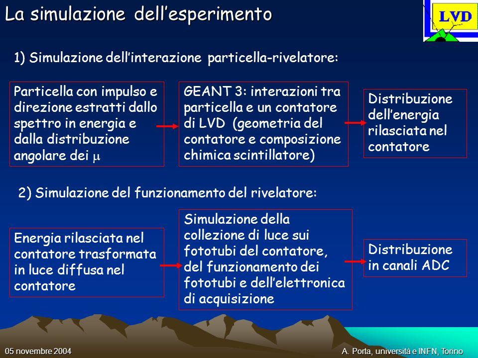 La simulazione dell'esperimento