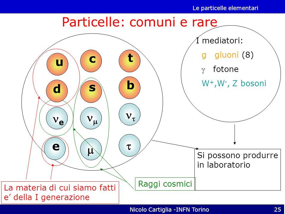 Particelle: comuni e rare