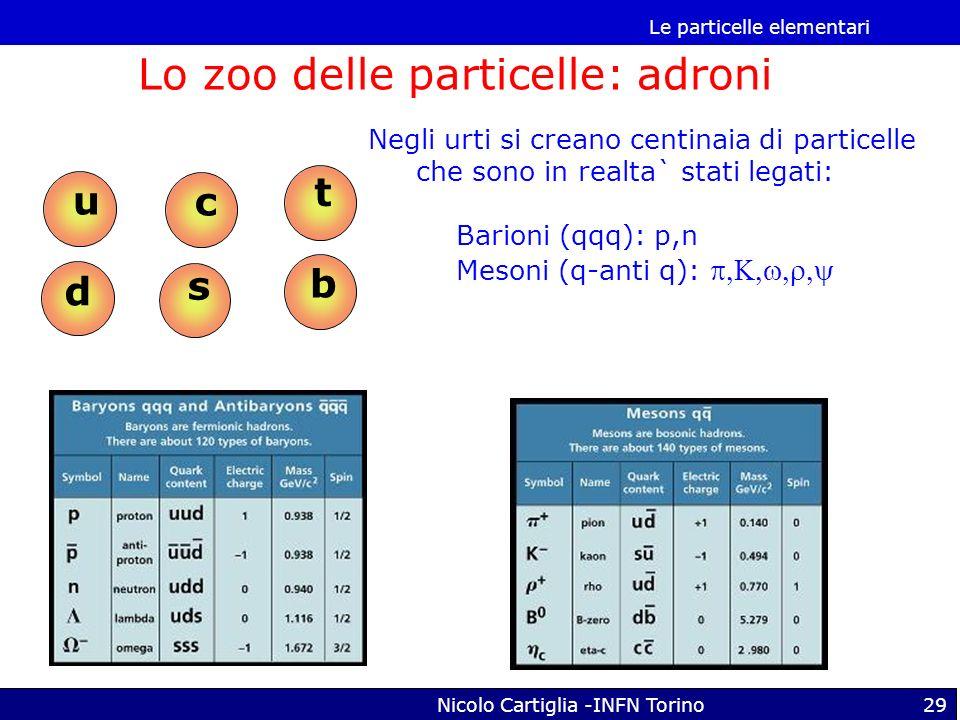 Lo zoo delle particelle: adroni