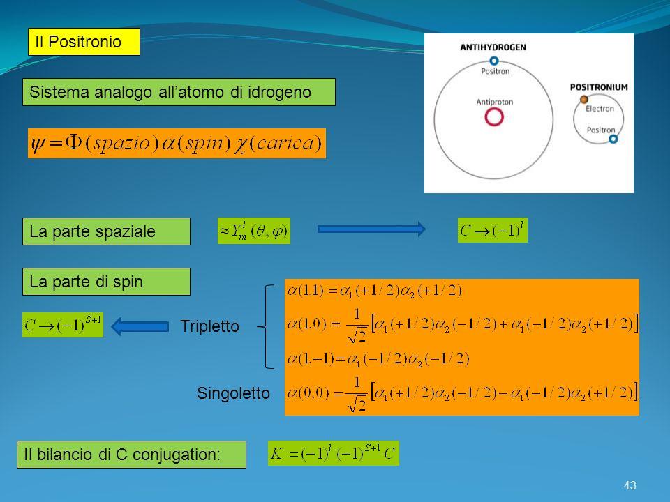 Il Positronio Sistema analogo all'atomo di idrogeno. La parte spaziale. La parte di spin. Tripletto.