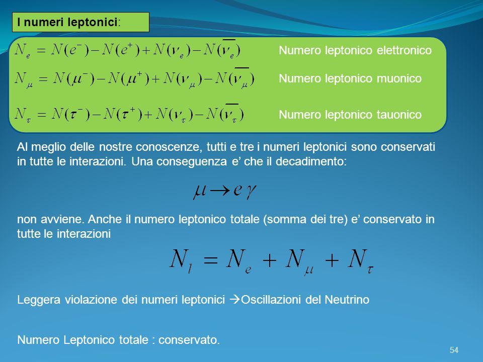 I numeri leptonici: Numero leptonico elettronico. Numero leptonico muonico. Numero leptonico tauonico.