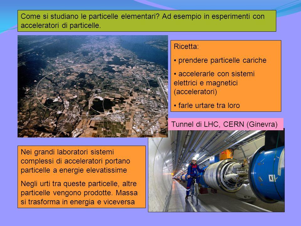 Come si studiano le particelle elementari