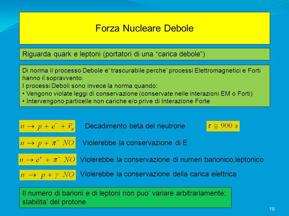 Forza Nucleare Debole Riguarda quark e leptoni (portatori di una carica debole )