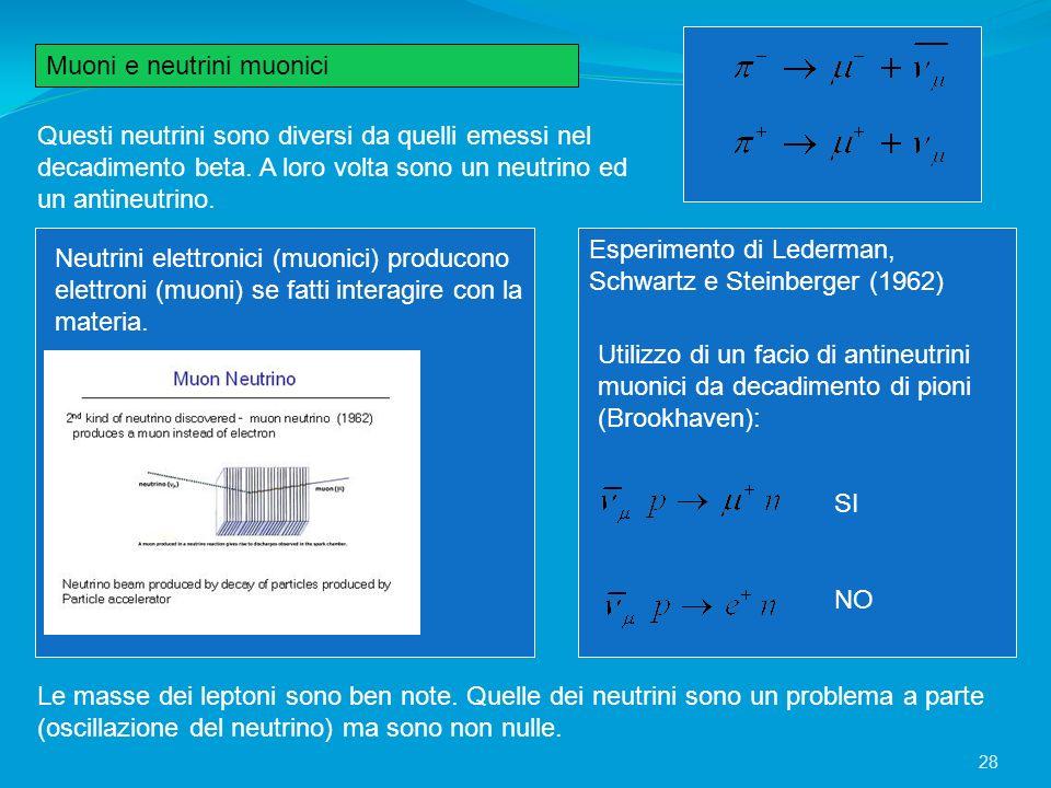 Muoni e neutrini muonici