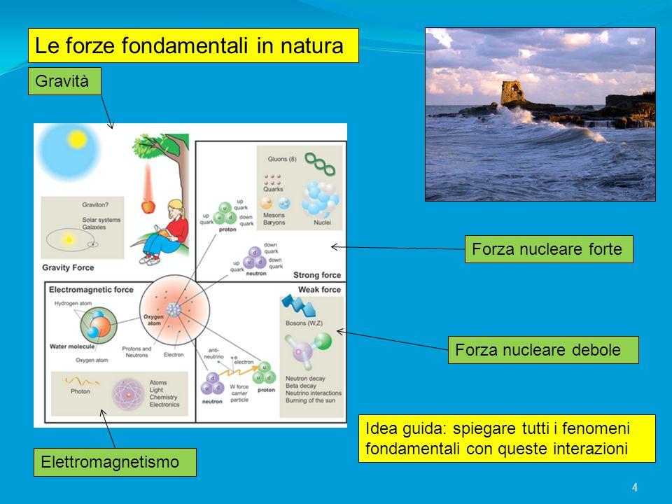 Le forze fondamentali in natura