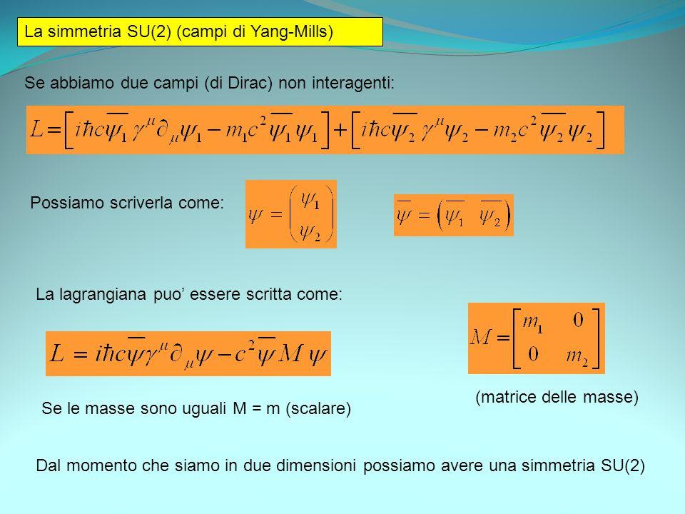 La simmetria SU(2) (campi di Yang-Mills)