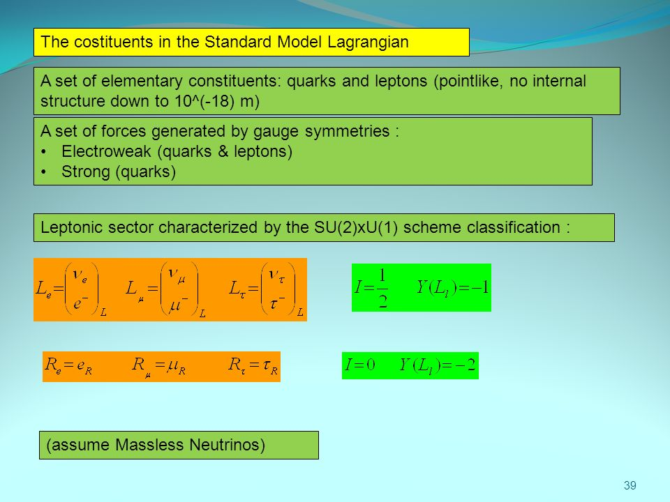 The costituents in the Standard Model Lagrangian