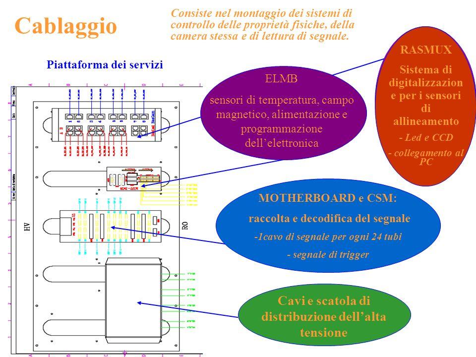 Cablaggio Cavi e scatola di distribuzione dell'alta tensione RASMUX