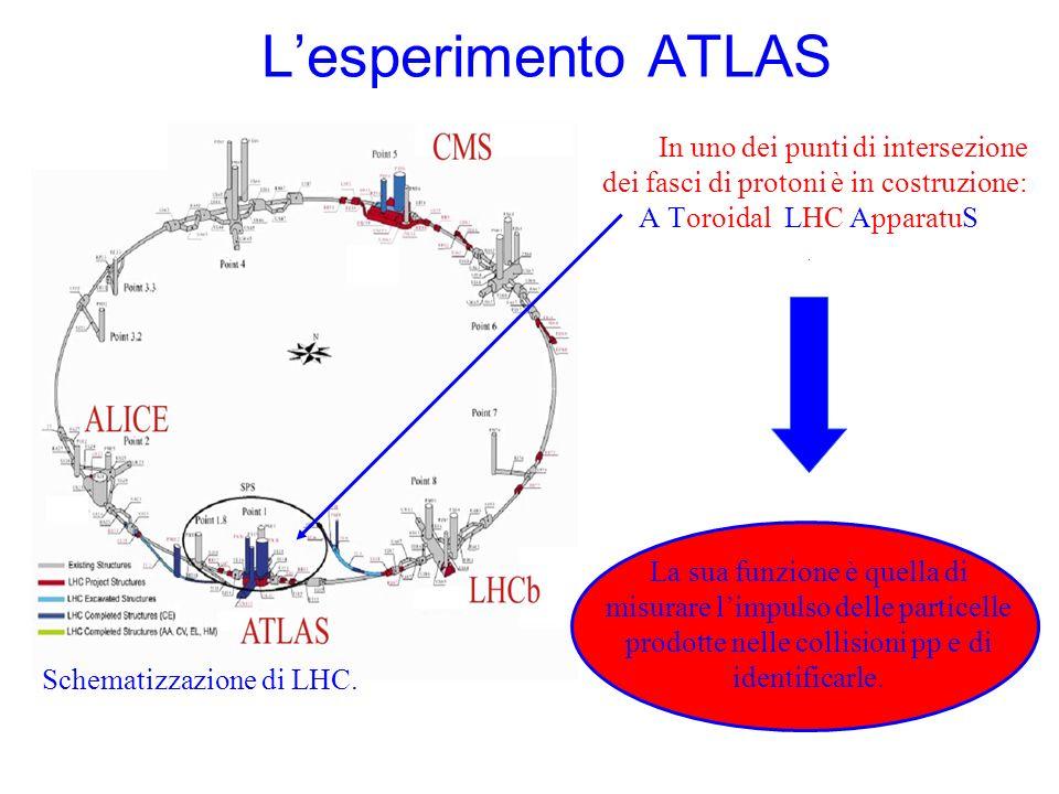 L'esperimento ATLAS In uno dei punti di intersezione