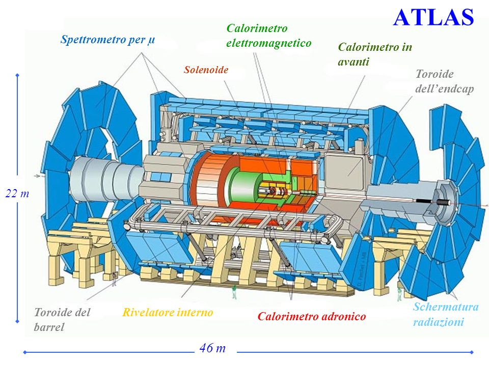 ATLAS 46 m Calorimetro elettromagnetico Spettrometro per µ