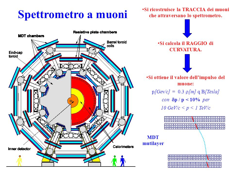 Spettrometro a muoni Si ricostruisce la TRACCIA dei muoni che attraversano lo spettrometro. Si calcola il RAGGIO di CURVATURA.