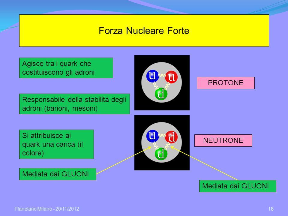 Forza Nucleare Forte Agisce tra i quark che costituiscono gli adroni
