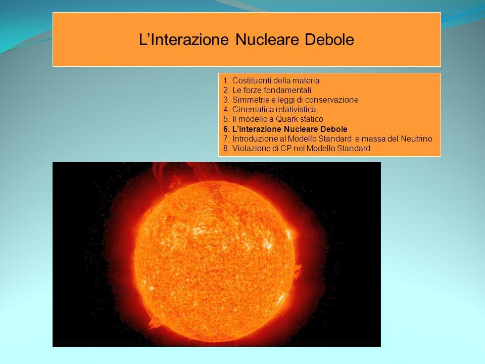 L'Interazione Nucleare Debole