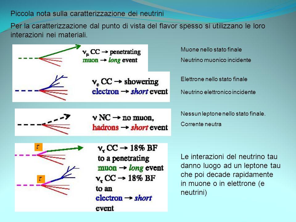 Piccola nota sulla caratterizzazione dei neutrini