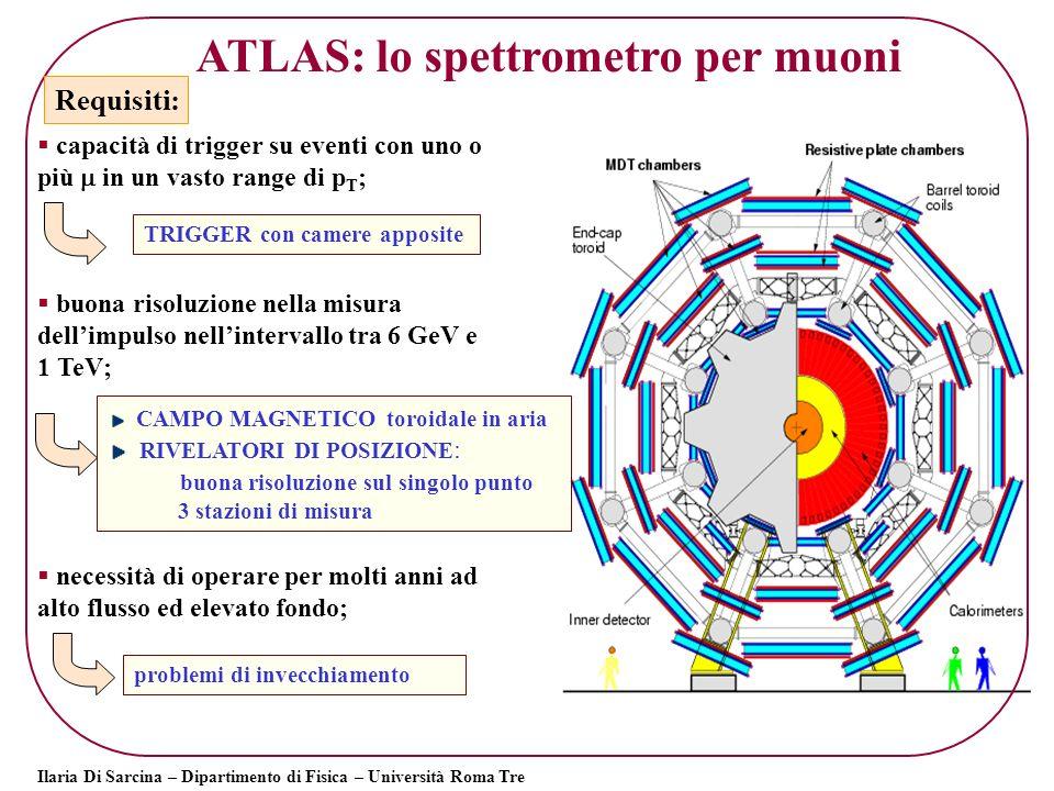 ATLAS: lo spettrometro per muoni