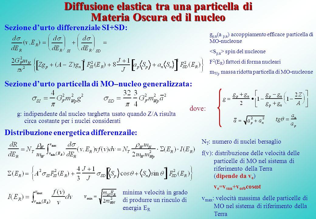 Diffusione elastica tra una particella di Materia Oscura ed il nucleo
