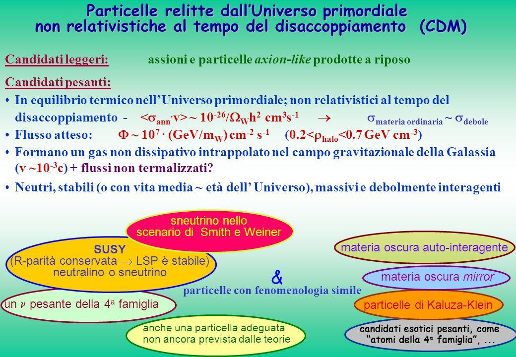 & Particelle relitte dall'Universo primordiale