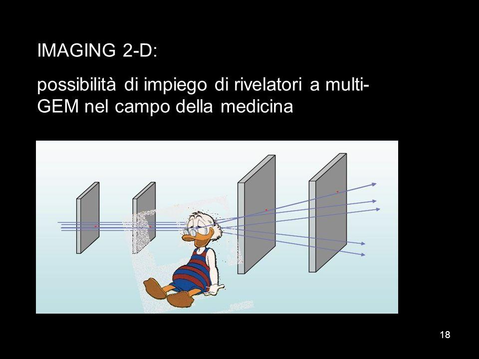 IMAGING 2-D: possibilità di impiego di rivelatori a multi-GEM nel campo della medicina