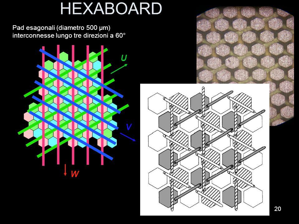HEXABOARD Pad esagonali (diametro 500 μm) interconnesse lungo tre direzioni a 60° U V W