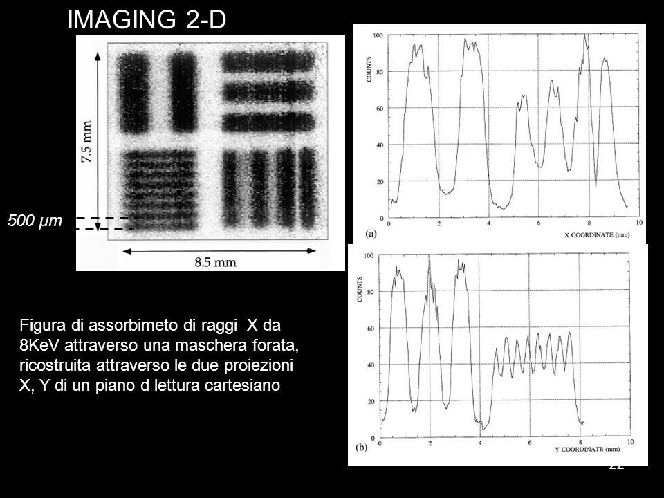 IMAGING 2-D 500 µm.