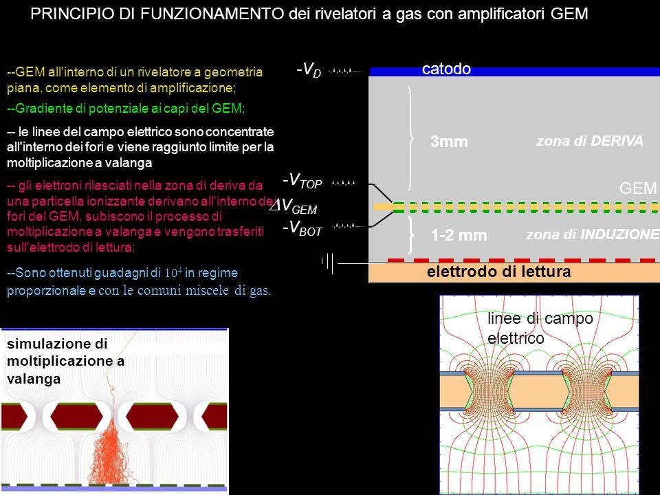 PRINCIPIO DI FUNZIONAMENTO dei rivelatori a gas con amplificatori GEM