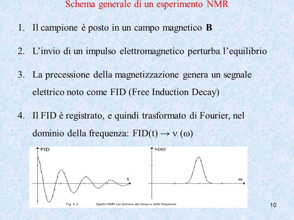 Schema generale di un esperimento NMR