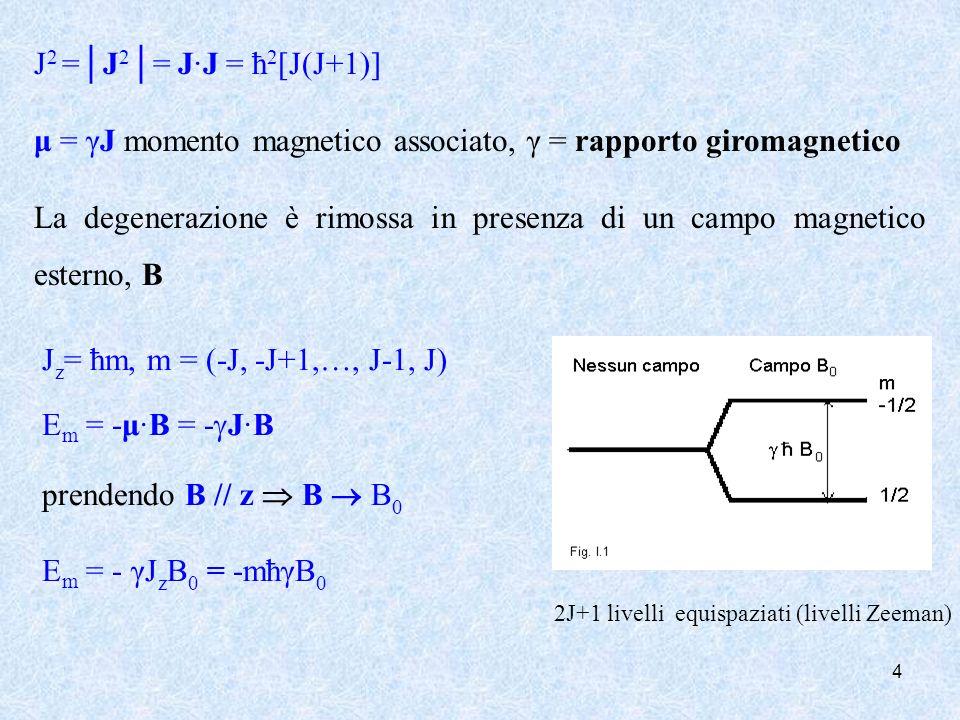 μ = γJ momento magnetico associato, γ = rapporto giromagnetico