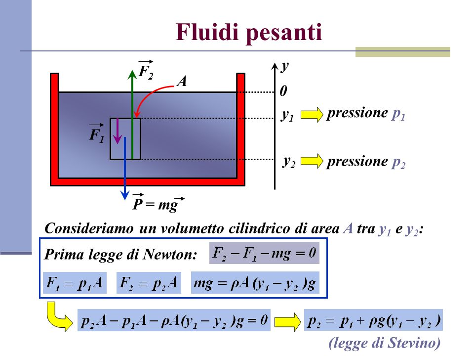 Fluidi pesanti y F2 A y1 pressione p1 F1 y2 pressione p2 P = mg