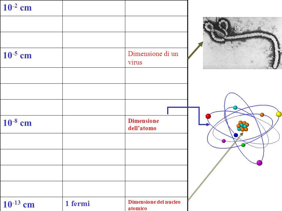 10-2 cm 10-5 cm 10-8 cm 10-13 cm 1 fermi Dimensione di un virus
