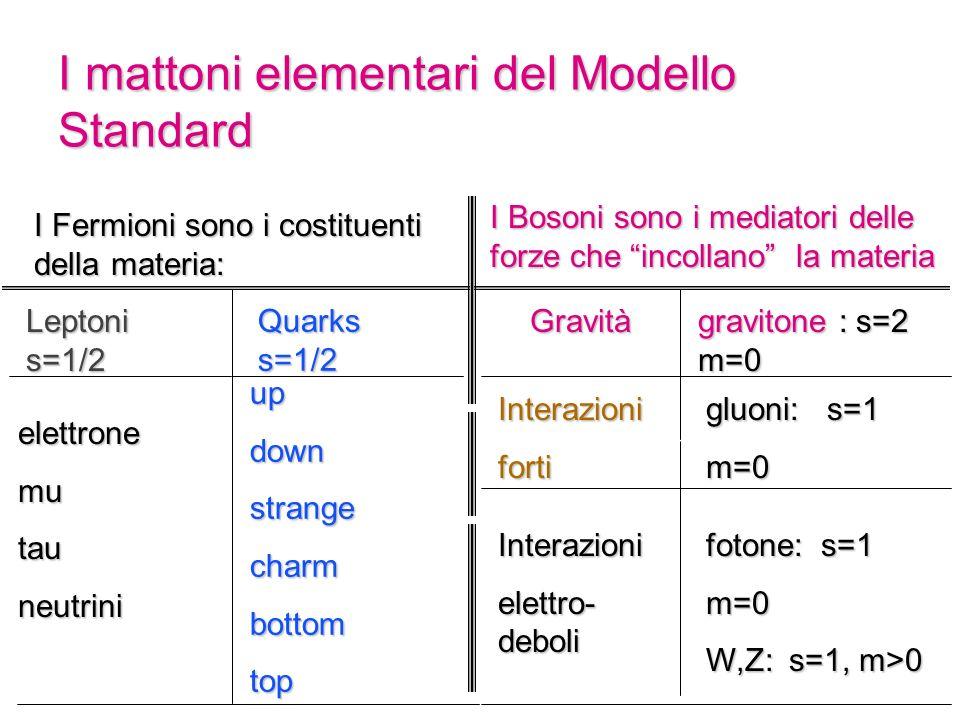 I mattoni elementari del Modello Standard