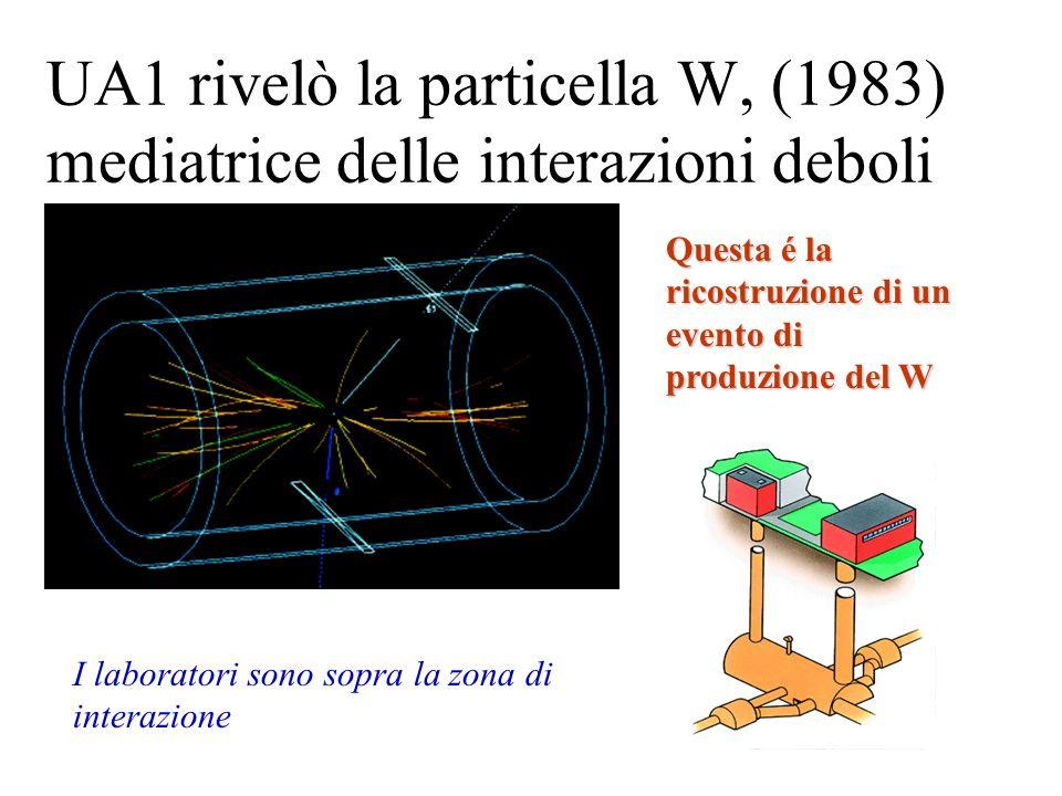 UA1 rivelò la particella W, (1983) mediatrice delle interazioni deboli