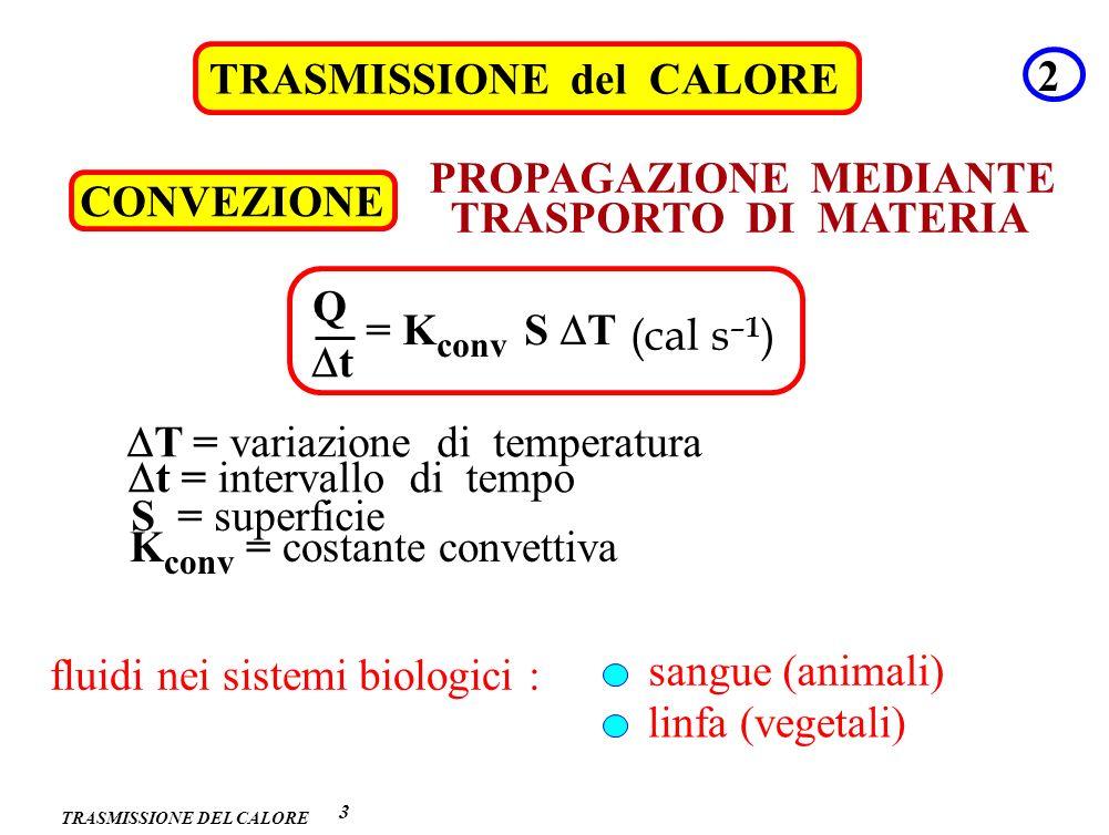 TRASMISSIONE del CALORE 2