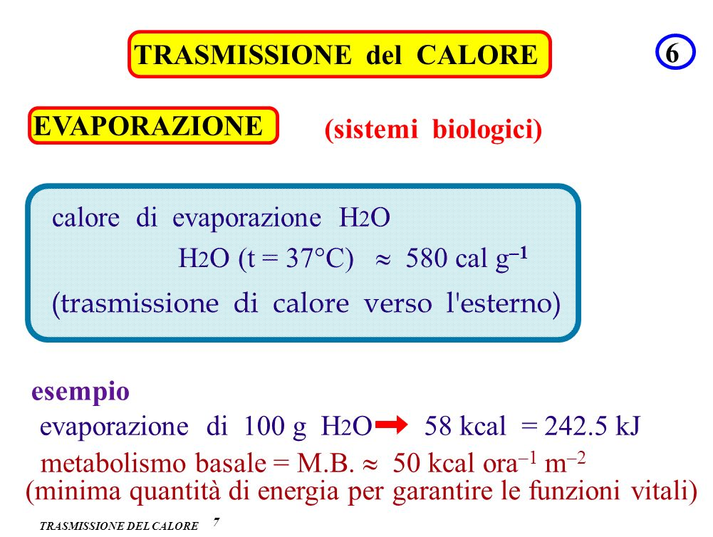 TRASMISSIONE del CALORE 6