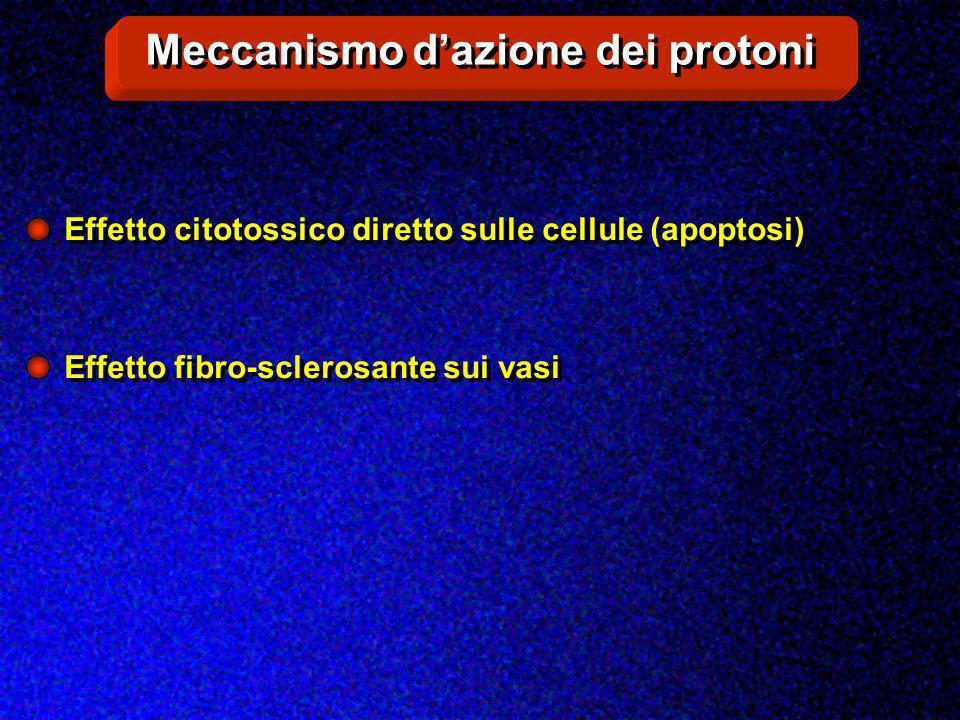 Meccanismo d'azione dei protoni