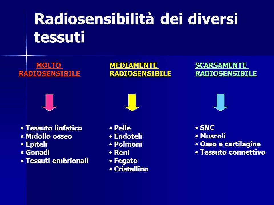 Radiosensibilità dei diversi tessuti