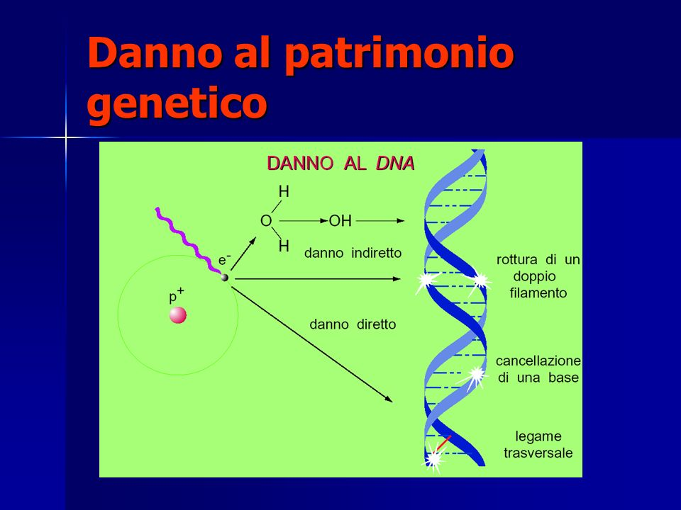 Danno al patrimonio genetico