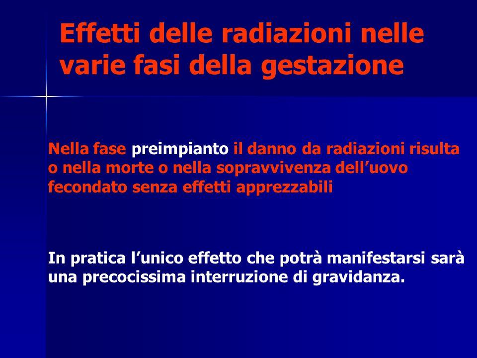 Effetti delle radiazioni nelle varie fasi della gestazione