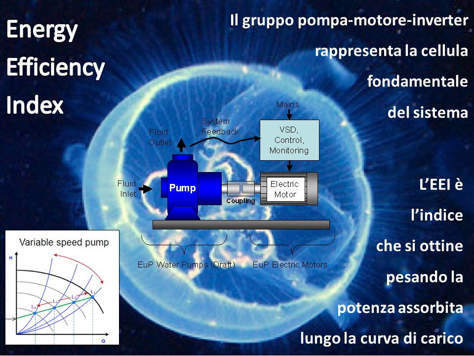 Energy Efficiency Index Il gruppo pompa-motore-inverter