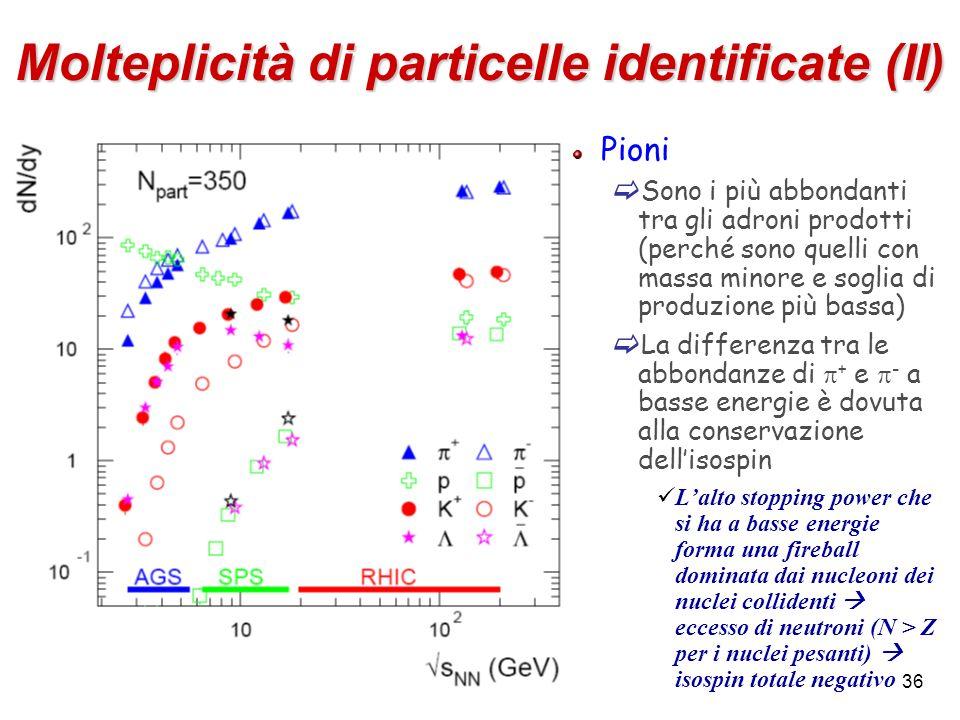 Molteplicità di particelle identificate (II)