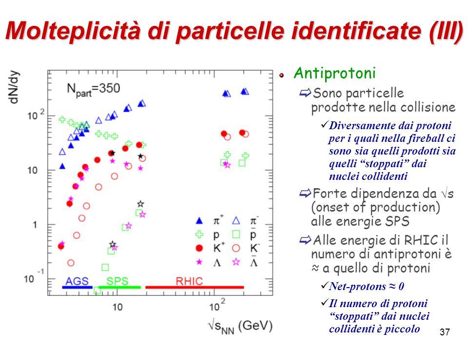 Molteplicità di particelle identificate (III)
