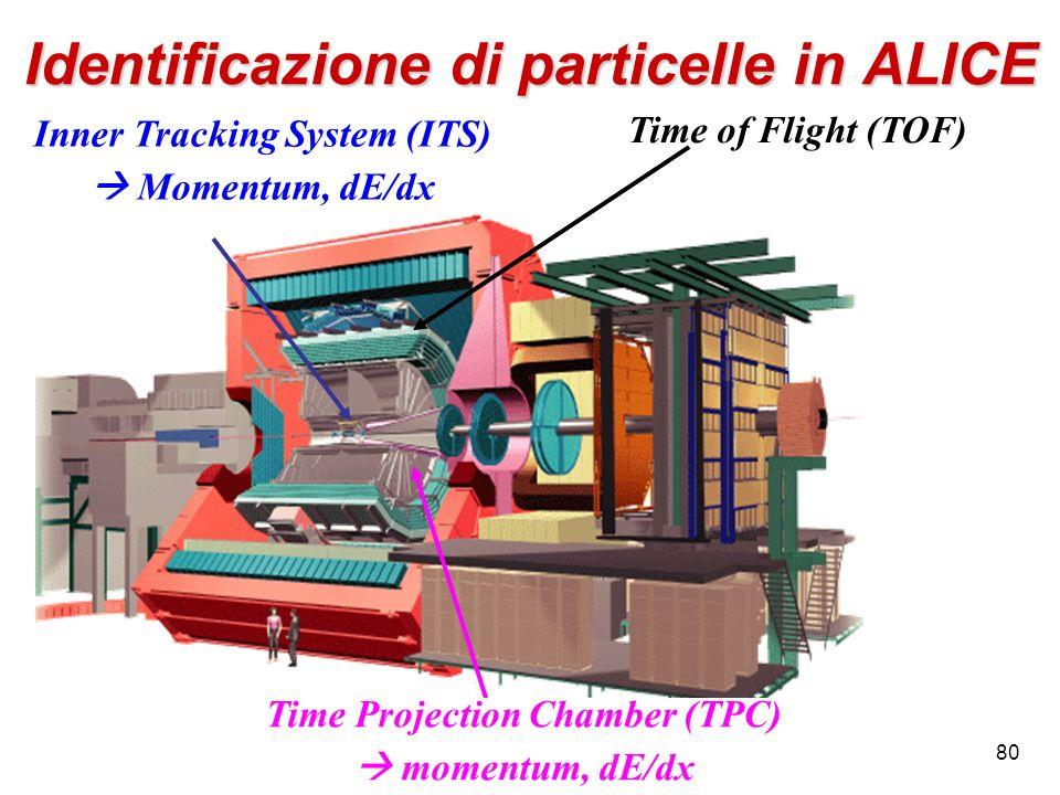 Identificazione di particelle in ALICE
