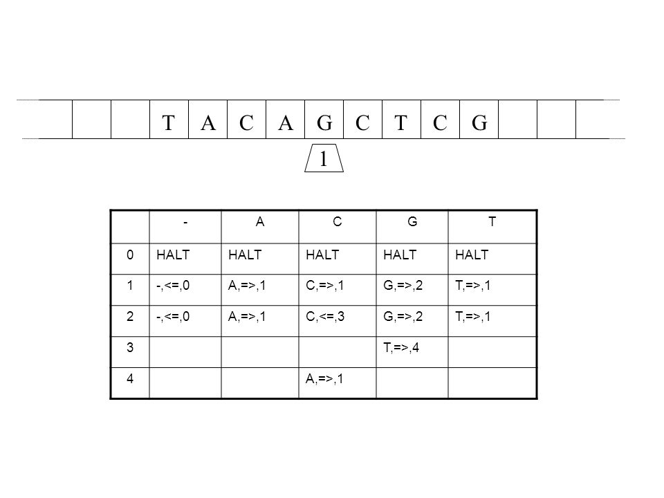 T A C A G C T C G 1 - A C G T HALT 1 -,<=,0 A,=>,1 C,=>,1
