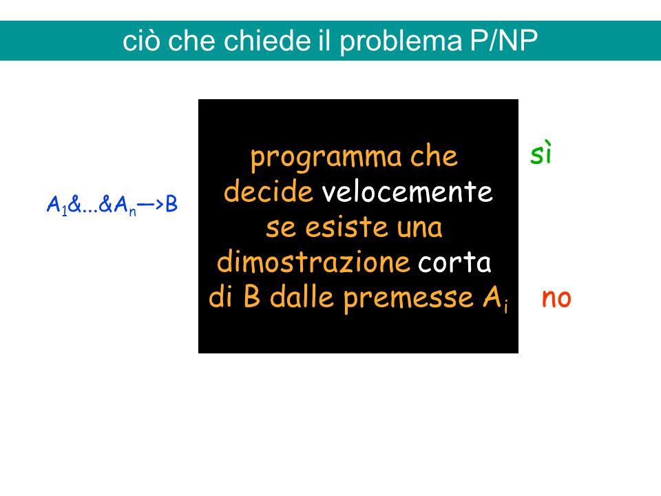 ciò che chiede il problema P/NP