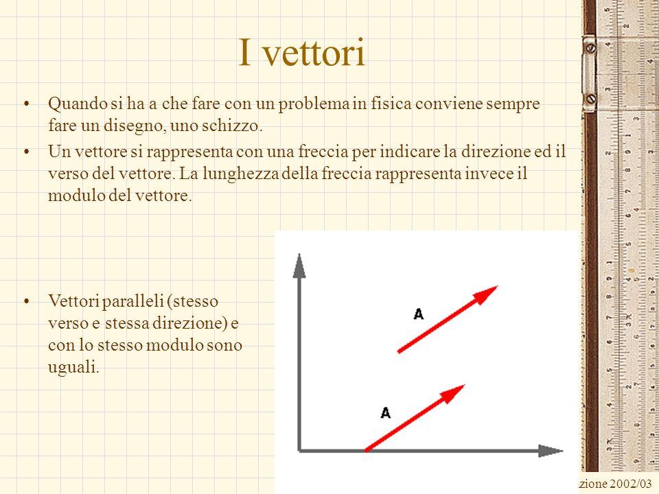 I vettori Quando si ha a che fare con un problema in fisica conviene sempre fare un disegno, uno schizzo.