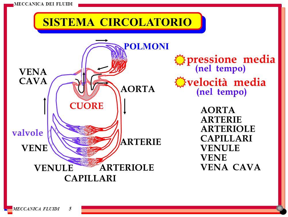 SISTEMA CIRCOLATORIO pressione media velocità media POLMONI