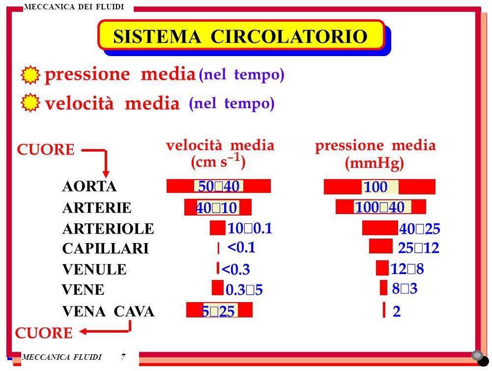 SISTEMA CIRCOLATORIO pressione media velocità media (nel tempo)