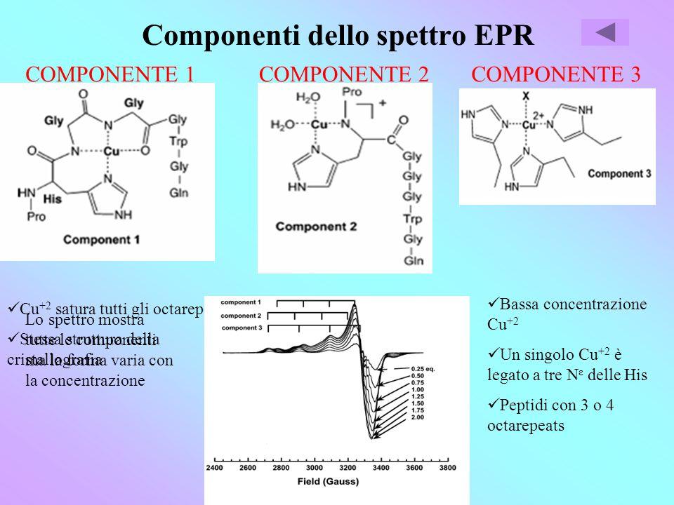 Componenti dello spettro EPR